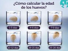 #huevos #edad