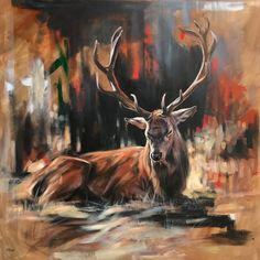 An animal lover all her life, Aimée Rolin Hoover is a contemporary wildlife painter living and working in Los Angeles, California. Wildlife Paintings, Wildlife Art, Animal Paintings, Acrylic Painting Animals, Deer Paintings, Original Paintings, Horse Drawings, Art Drawings, Drawing Art