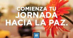 PazConDios.net es un viaje interactivo de cuatro pasos hacia la paz con Dios. ¡Disfrute su visita a este sitio!