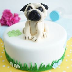 Tort z mopsem (1) w kategorii Torty dla dzieci Dog Bowls, Cake, Desserts, Pug, Tailgate Desserts, Deserts, Kuchen, Postres, Dessert
