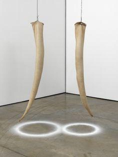 Tusks - Damian Ortega - 2012 - leather and salt Contemporary Sculpture, Contemporary Art, Damian Ortega, Rashid Johnson, Salt Art, Claes Oldenburg, Installation Art, Three Dimensional, 3 D