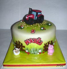 Traktor pro Matěje on Cake Central