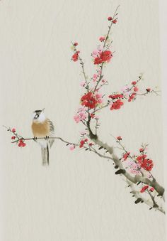 Chinese plum blossom painting & Chinese bird painting
