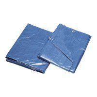 Mintcraft 30X60 Blue Poly Tarp 6001465 * Check out this great product.
