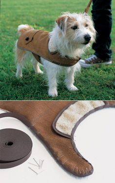 I feel like Gus needs a tweed coat for his first winter in Wyoming.  10 DIY pet clothes