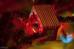 Christmas Bird House   345/365