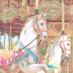 carousel horse by marasca photography
