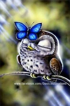 DIY Diamond Painting by Number Kits with Animals Owl and Butterfly Patterns, it is Simple and easy to use. - Full Drill Special shaped resin rhinestone design, it is Vibrant and brilliant. Baby Owls, Cute Baby Animals, Cute Drawings, Animal Drawings, Cute Owl Drawing, Owl Pictures, Beautiful Owl, Owl Crafts, 5d Diamond Painting