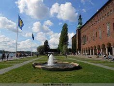 Jardines ayuntamiento Estocolmo