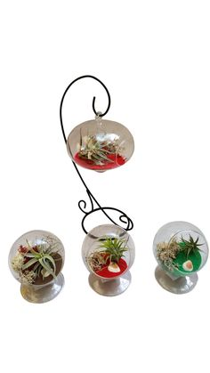 Christmas Airplant Circles With Stand