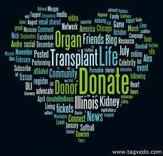 Organ and tissue donation saves lives! Read my personal story at: www.dionneandandre.com