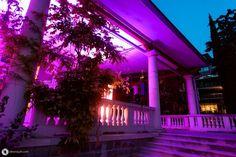 Свадьба Артема и Анны в Словении Our Wedding, Fair Grounds, Neon Signs, Fun, Travel, Voyage, Viajes, Traveling, Trips