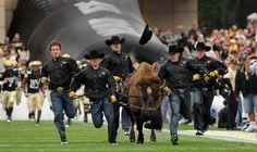 University of Colorado--Boulder | Photos | Best College | US News