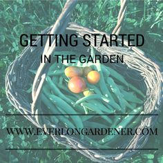 Feeling overwhelmed by garden planning?  Here are some tips for getting started!