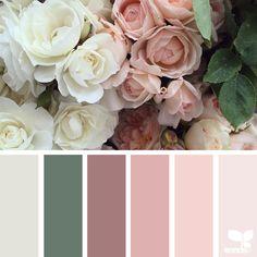 Flora Palette nature-colors-palette-design-seeds-jessica-colaluca-13