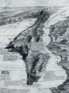 The Gallipoli Withdrawal, 1916 (This may be the coolest map I've seen all year) Ww1 History, World History, Military History, Old Maps, Antique Maps, World War One, First World, Gallipoli Campaign, Anzac Day