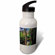 3dRose DYLAN SEIBOLD - PHOTOGRAPHY - RIVER TREES BRIDGE - Flip Straw 21oz Water Bottle (wb_245689_2)