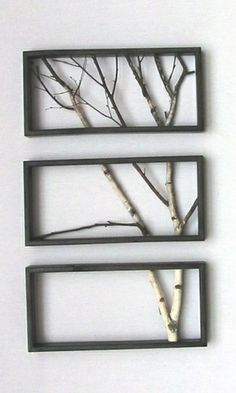Cute tree branches in frames