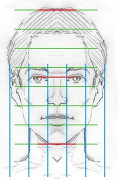 Face proportions.   Looks complicated, but worth studying if you're attempting portraits. The surprise is that the top of the head is a lot higher up than you expect: as a beginner, you have to almost force yourself to ignore your assumptions. Individual faces may vary, of course, but not by much.