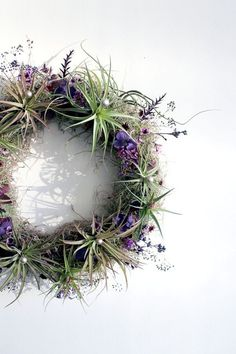 Living Wreath by robincharlotte: Made of live air plants, live spanish moss, hand-dried seasonal purple flowers, and other subtle sparkling foliage details. #Wreath #Air_Plant:
