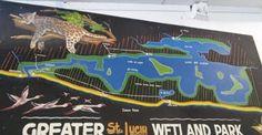 Lucia Wetlands Park: Mike Bower vs Bierpens Slugging it out on Social . Wetland Park, Social Media, Social Networks, Social Media Tips
