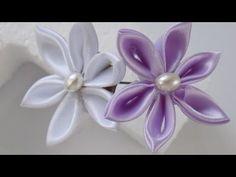Flor de uña de gato - YouTube
