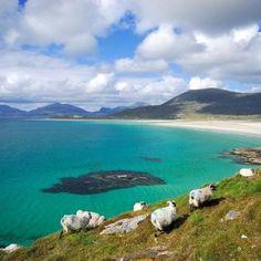Les plages idylliques d'Harris et Lewis - Luskentyre beach, Isle of Harris [Outer Hebrides], Scotland. Scotland Uk, Scotland Travel, The Places Youll Go, Places To See, British Beaches, Isle Of Harris, Visit Egypt, Outer Hebrides, Scottish Islands
