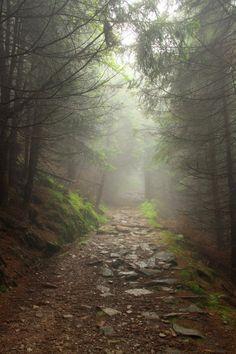 Valley of the Owls, Karkonosze Mountains, Poland by ~black-amber