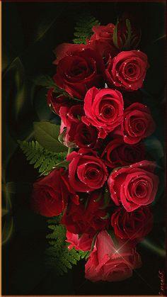 Bildergebnis für Gifs Rosen rot