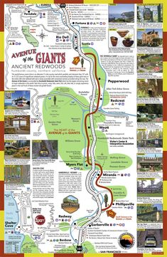 Avenue of the Giants map Humboldt Redwoods State Park, Humboldt County, National Parks Map, California National Parks, Travel Maps, Travel Usa, Car Travel, Travel Packing, Travel Backpack