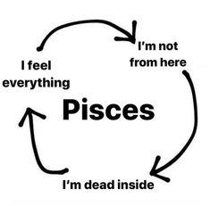 Pisces Love, Pisces Quotes, Zodiac Signs Pisces, Zodiac Signs Astrology, My Zodiac Sign, Zodiac Funny, Zodiac Memes, Mbti, Pisces Personality