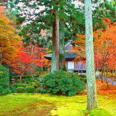 Sanzenin, Kyoto
