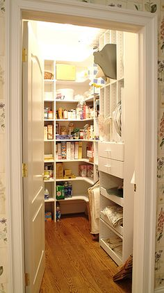 Nothing fancy, but something like this for a pantry would be ideal for me! I want lighting, walk-in feature, lose that bottom shelf so I can put larger containers of rice, flour, etc on the bottom floor against the wall. And broom/mop area!