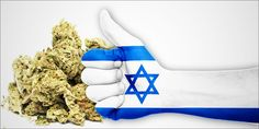 """The U.S. government says that cannabis has """"no medicinal value"""", yet has been funding research in Israel for a half of a century. What gives?"""
