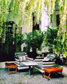 The Siam Hotel; Colonial House Exteriors, Modern Colonial, The Siam Hotel, Spa Interior Design, Indoor Water Features, My Ideal Home, Outdoor Retreat, Indochine, Tropical Houses