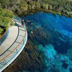 """""""Te Waikoropupu Springs Photo by: @craigparryphotography #newzealandguide to be featured Tag someone you'd take ✌"""""""