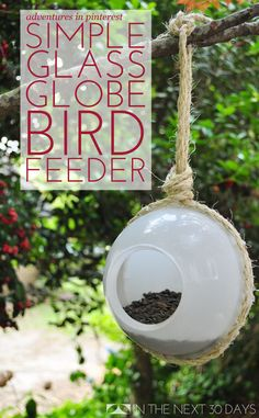 These DIY Bird Feeder uses a glass globe, twine, and silicon glue to make a high-impact easy backyard project. | In The Next 30 Days