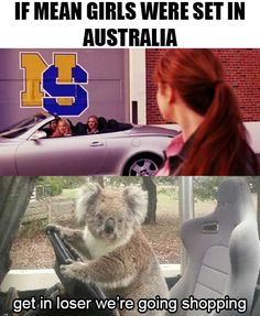 Just 100 Really Fucking Funny Memes About Australia - Koala Funny - Funny Koala meme - - Just 100 Really Fucking Funny Memes About Australia The post Just 100 Really Fucking Funny Memes About Australia appeared first on Gag Dad.