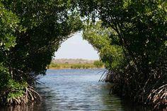 Everglades National Park Florida <3