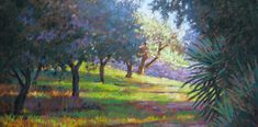 Frutteto d'Oliva- Pastel painting of a sunlit olive orchard in Italy. Art for sale. Painting by Jill Stefani Wagner  www.jillwagnerart.com