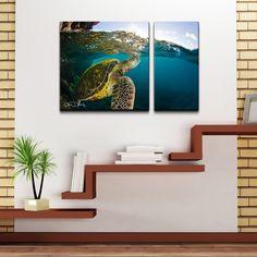 Chris Doherty U0027Maui Turtle Driftsu0027 Oversized Canvas Wall Art ...