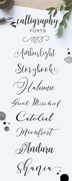 Browse more than 2,400 handwritten calligraphy fonts on Creative Market!
