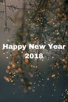 Happy new year messages for friends 2018. I made no resolutions for the New Year. The habit of making plans, of criticizing, sanctioning and molding my life, is too much of a daily event for me.