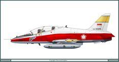 BAe Hawk Mk 109 Indonesian Air Force