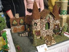 Here are some of the winning entries from the TEEN Division of the National Gingerbread House Competition at the Grove Park Inn 2008