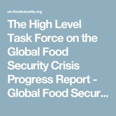The High Level Task Force on the Global Food Security Crisis Progress Report - Global Food Security