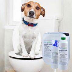 Mit zu den hartnäckigsten Gerüchen zählen Tiergerüche. Der BactoDec Geruchskiller mit seiner besonderen Tiefenwirkung kommt hier besonders gut zur Geltung.