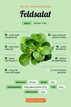 Das solltest du über Feldsalat wissen |eatsmarter.de #ernährung #infografik #feldsalat