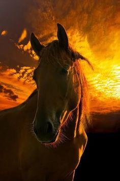 sundown....