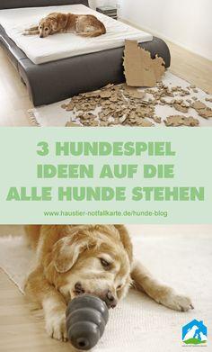3 Hundespiel Ideen, auf die alle Hunde stehen - im Haustier Notfallkarte Hunde Blog! #hunde #diy